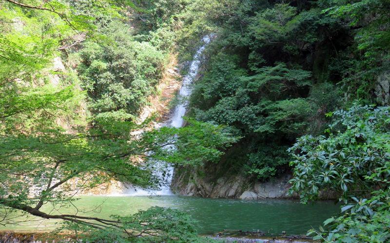 滝の上の部分